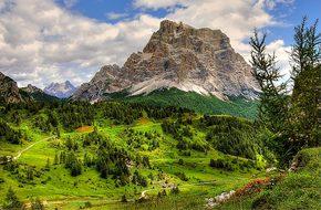 Monte Pelmo, Dolomites, Alm, Nature