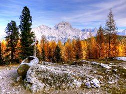 Wood, Snow, Mountain, Landscape, Nature