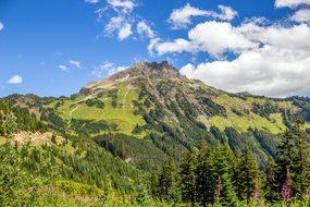 Mt Cheam, Chilliwack, Mountain, Nature