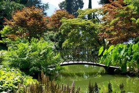 Italy, Bellagio, Como, Park, Garden
