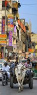 Street Life, Street, Old, Delhi, City