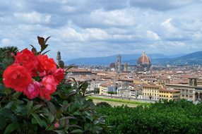 Florence Firenze Italy Florence Florence F