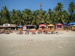 Sand Goa Shack India Beach Coastline Tropi