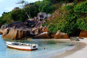 Mahé Seychelles Island Iceland Palm Sea Bl
