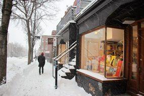 Snow, Winter, Store, Vitrine, Cold