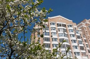 Moscow, Russia, Spring, Flowers