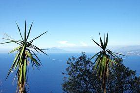 Italy, Capri, Island, Mediterranée