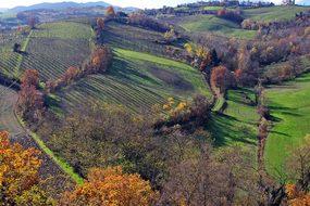 Langhirano, Parma, Emilia Romagna, Italy