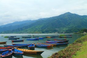 Pokhara Nepal Boats Colorful Boats Nepali