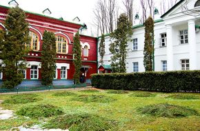 Pskov-Caves Monastery, Arch, Assumption