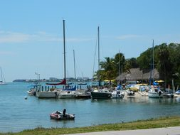 Sarasota Florida Marina Boats Water Travel