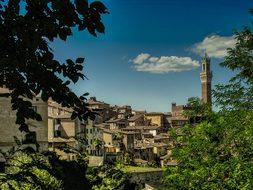 Pisa Italy Village Town City Mediterranean