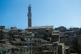 Siena, Morgenstimmung, Piazza Del Campo