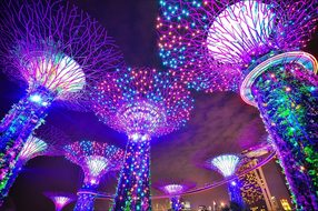 Singapore Gardens By The Bay Long Exposure