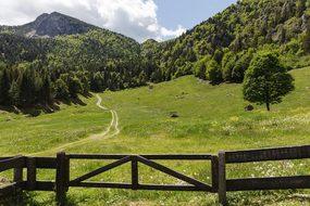 Trento, Garda Mountains, Alm, Italy
