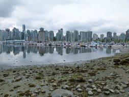 Vancouver City British Columbia Canada Wat