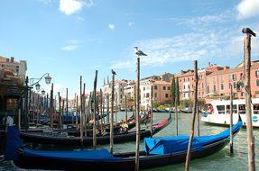 Venetian, Canal, Gondola, Boat, Water
