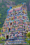 Temple Hindu Hindu Temple Victoria Seychel