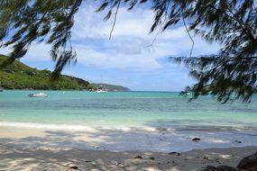 Seychelles Victoria Ocean Island Mahe Trop