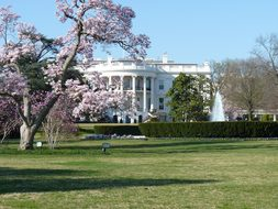 White House Washington Dc Politics Governm