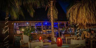 Night, Curacao, Willemstad, Blue, Bar